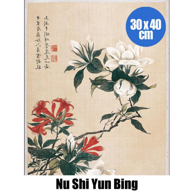BA PF Nu Shi Yun Bing Lys oran