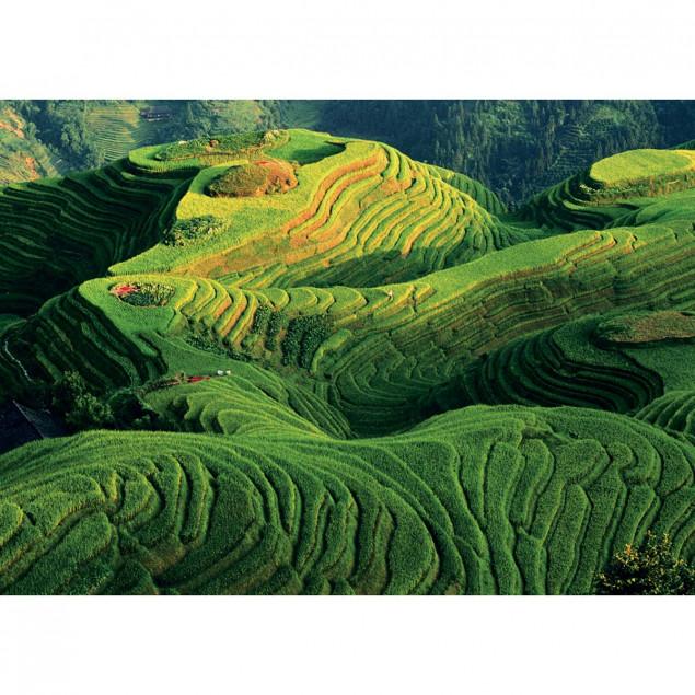 Terraced paddy fields, China, Keren Su - 50 x 70 c