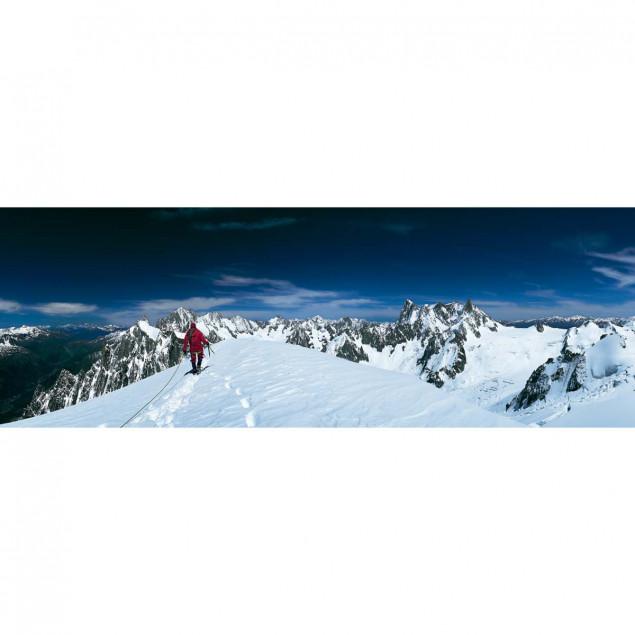 Mont Blanc du Tacul, Maudit