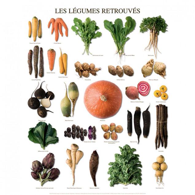 Heirloom Vegetables poster - 40 x 50 cm