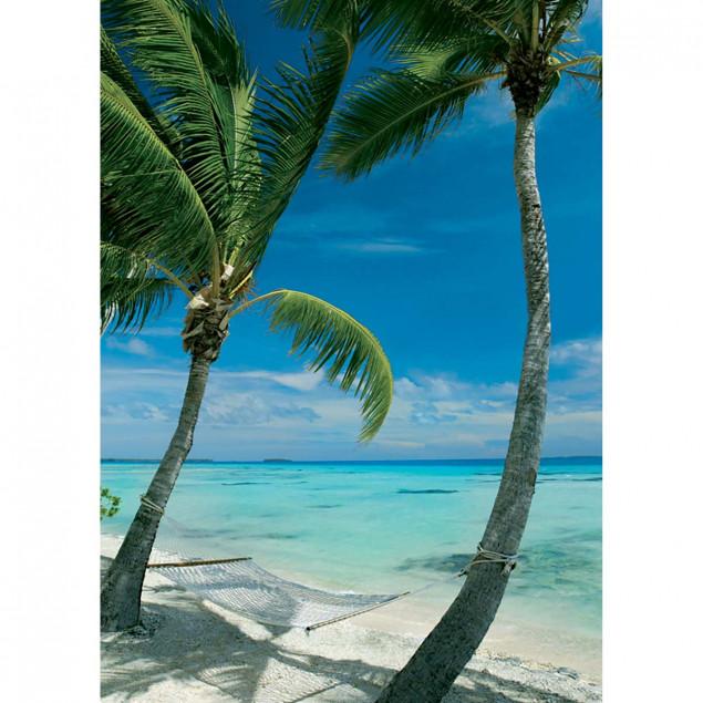Hammock between two palm trees on beach