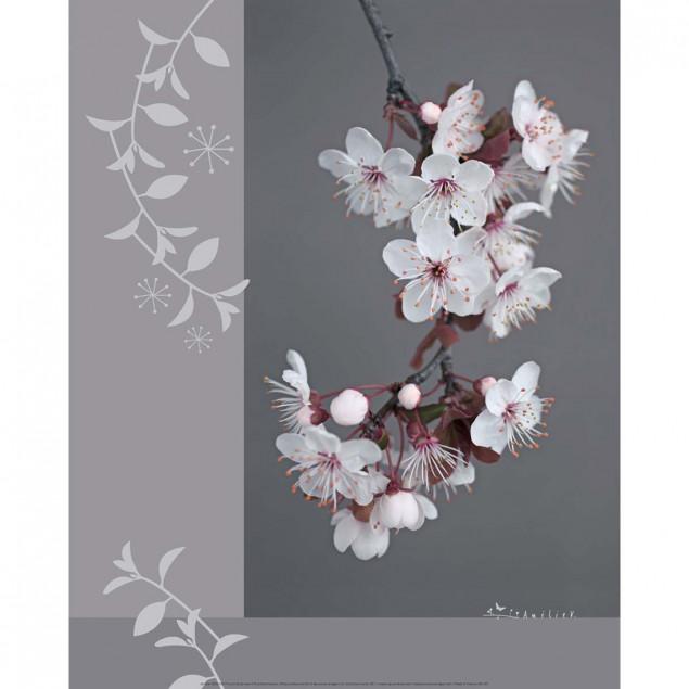 Plum Tree Blossom poster - A. VUILLON, 40 x 50 cm