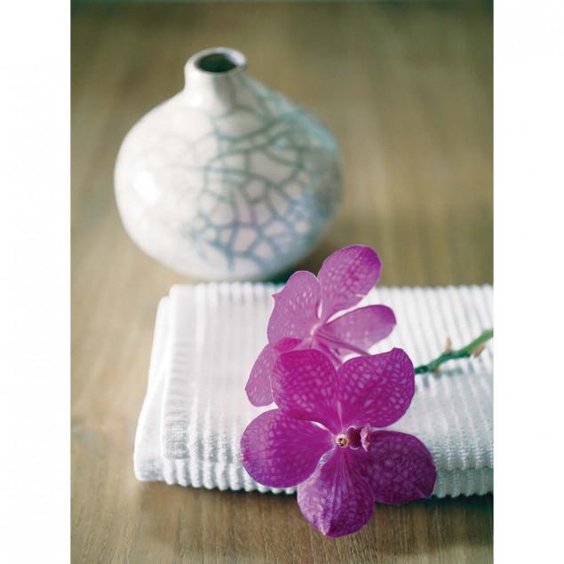 Pink Orchid poster - A. VUILLON, 30 x 40 cm