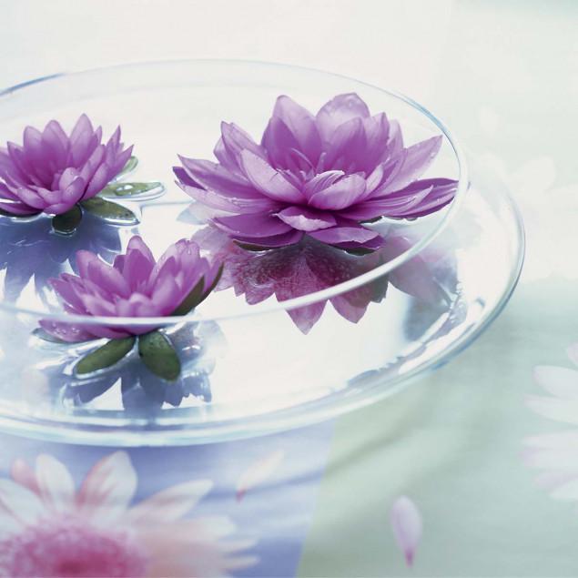 Transparent Bouquet