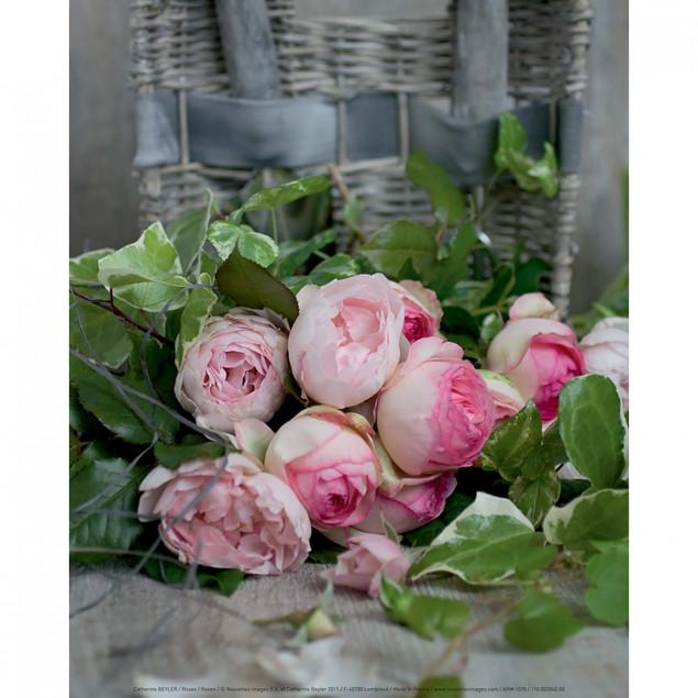 Roses poster, Catherine Beyler - 24 x 30 cm