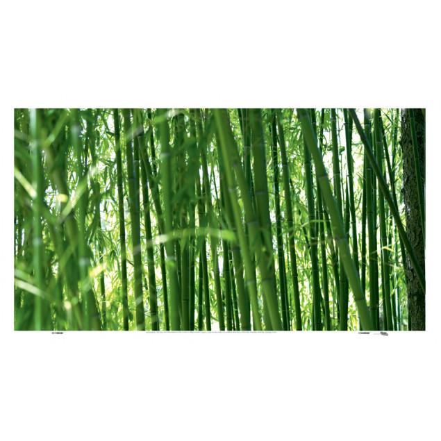 Bamboo, Cédric PORCHEZ  - Printed canvas 45 x 90 c