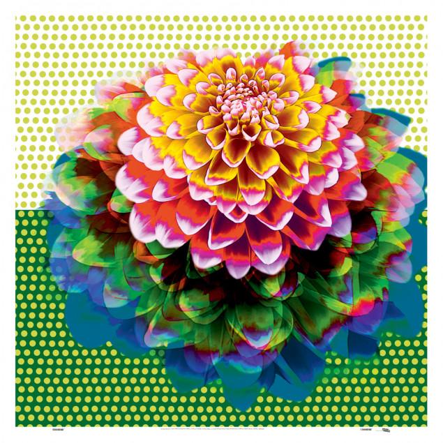 Sunny, Anna DANI - Printed canvas 90 x 90 cm