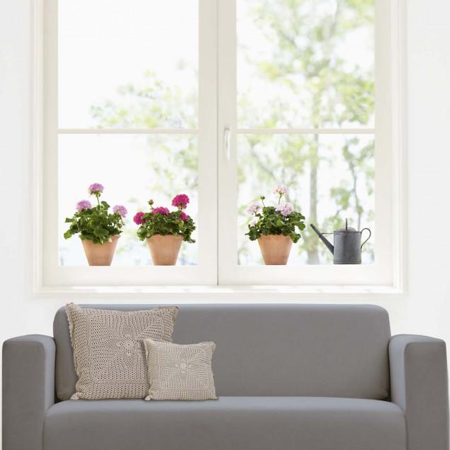 Sticker fenêtre Géraniums roses (3 pots)