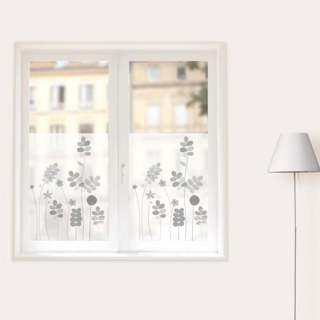 Beautiful grey acacia flowers window sticker