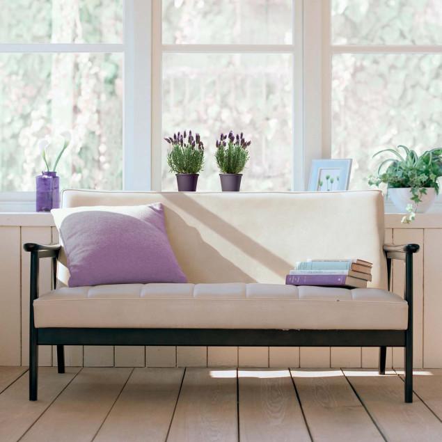 Lavender in pots window sticker