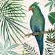 Jungle Parrot Canvas 9 x 9 inch