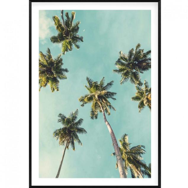 Affiche encadrée palmiers vintage avec son cadre n