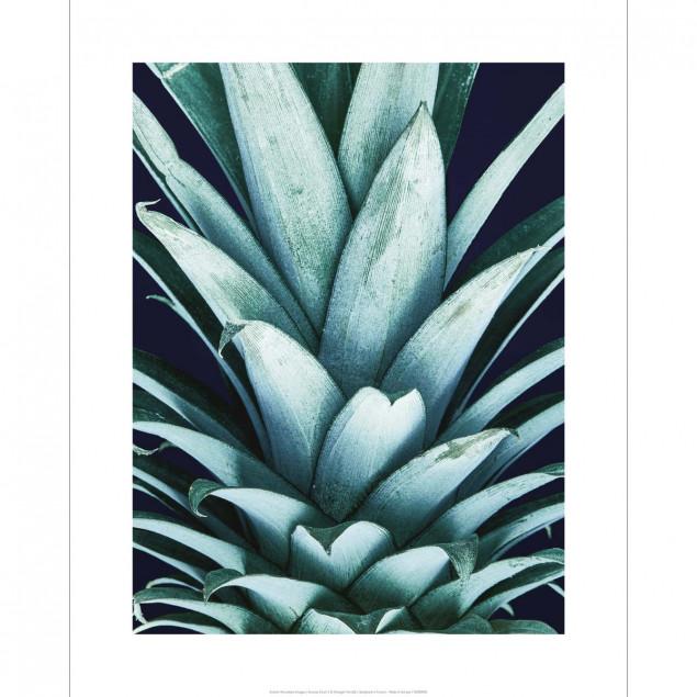 Affiche photo Ananas Vintage - 40X50cm