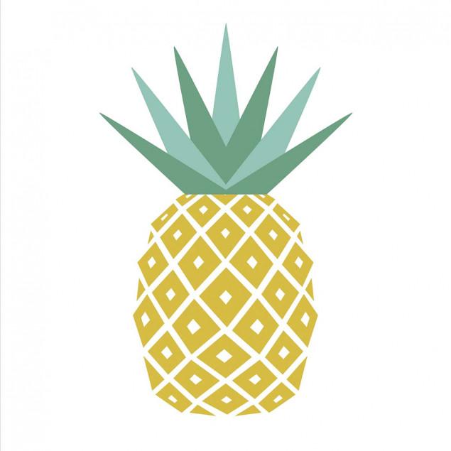 Adhesive squares -Pineapple